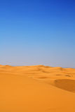 Dune di sabbia verticali Fotografia Stock