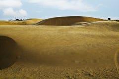 Dune di sabbia vicino a Jaisalmer, Ragiastan, India immagini stock libere da diritti