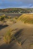 Dune di sabbia a Ynyslas Immagini Stock