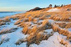 Dune di Saugautuck, lago Michigan Immagini Stock