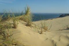 Dune du Pyla 03 Royalty-vrije Stock Foto