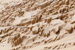 Dune du Pyla Royalty Free Stock Photography