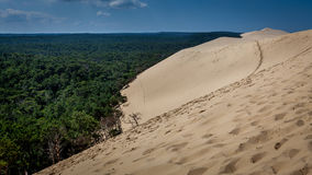 Dune du Pyla Stock Afbeeldingen