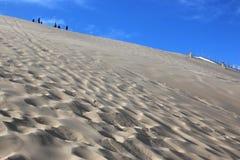 Dune du Pyla, France. Sand dunes of the Dune du Pilat Stock Photos