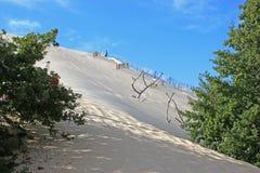 Dune du Pyla, France. Sand dunes of the Dune du Pilat Royalty Free Stock Photo