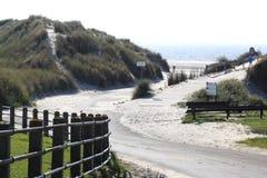 Dune e spiaggia all'isola di Ameland, Olanda Immagine Stock