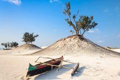 Dune e spiaggia selvaggia Immagini Stock