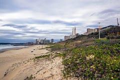 Dune e vegetazione sulla spiaggia contro l'orizzonte della città Fotografia Stock