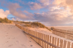 Dune Fence on Beach Royalty Free Stock Photo