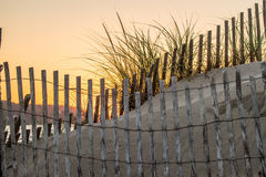 Dune fence Royalty Free Stock Photos