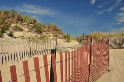 Dune Fences Royalty Free Stock Photo