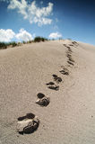Dune footsteps. Footsteps along sand dune against blue sky Royalty Free Stock Images