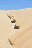 Dune formation Stock Images
