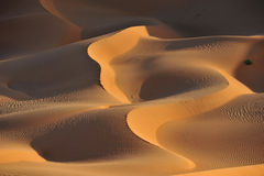 Dune formations in Rub al Khali royalty free stock images