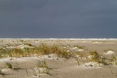 Dune forming on a stormy beach Royalty Free Stock Photography
