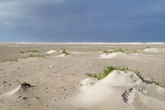 Dune forming on a stormy beach Stock Photo