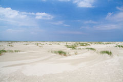 Dune forming on vast beach Royalty Free Stock Photo