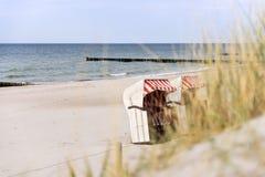 Dune grass on Baltic Sea beach Royalty Free Stock Photo