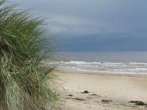 Dune grass beach horizon Royalty Free Stock Image