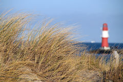 Dune grass near the sea in front of a lighthouse Stock Image