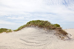 Dune with grass at the sandy beach Stock Images
