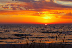 Dune Grass on a Summer Day - Lake Michigan Sunset. Royalty Free Stock Images