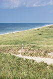 Dune with green grass. View for the beach. Dune with green grass on Sylt island. View for the beach vertical Royalty Free Stock Photography