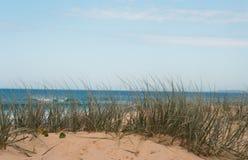 Dune herbeuse à la plage un jour ensoleillé et frais d'étés Photos stock
