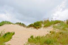 Detail of liepaja dunes Royalty Free Stock Images