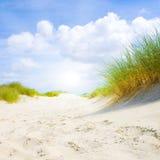 Dune idilliche con luce solare Immagini Stock