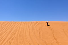 Dune jogger Royalty Free Stock Images