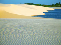 Dune with lagoon. National Park of the Lençois Maranhenses - Brazil Royalty Free Stock Images