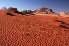 Dune landscape. Desert landscape with rippled sand dunes (Wadi Rum desert, Jordan Stock Photos