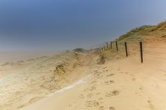 Dune landscape Dutch coast with sand drifts and wind eroded deep holes. Dune landscape in the winter at Dutch coast with by autumn storms deep carved out  wind Royalty Free Stock Photos