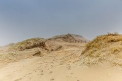Dune landscape Dutch coast with sand drifts and wind eroded deep holes. Dune landscape in the winter at Dutch coast with by autumn storms deep carved out  wind Stock Photos