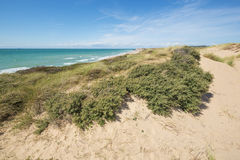 Dune landscape near Audresselles Royalty Free Stock Photo