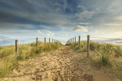 Dune Landscape Netherlands Stock Image