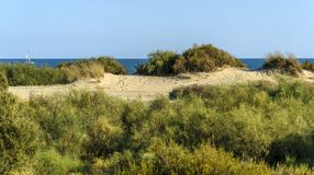 Dune landscape with sailboat in background in Spain Stock Photo