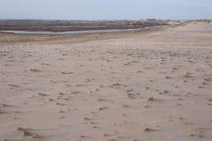 Dune landscape in Skagen, Denmark Royalty Free Stock Image