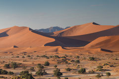 Dune landscape at Sossusvlei. Namibia, Africa Royalty Free Stock Photography