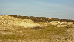 Dune landscape at the Zwin, nature reserve next to the Belgian coast Royalty Free Stock Photos