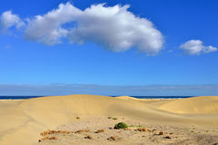 Dune Maspalomas Stock Photo