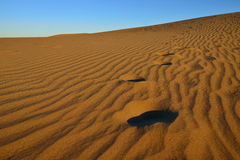 Dune Maspalomas Royalty Free Stock Images