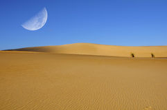 Dune moon Royalty Free Stock Photo