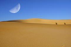 Dune moon. Quarter moon over sand dunes (composite Royalty Free Stock Photo