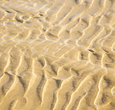 Dune morocco in africa brown coastline wet sand beach near atlan Stock Images