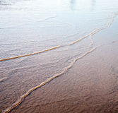 Dune morocco in africa brown coastline wet sand beach near atlan Royalty Free Stock Images
