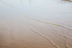 Dune morocco in africa   wet sand beach    ocean Royalty Free Stock Images
