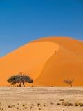 Dune 45 Stock Image