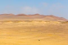 Dune multicolori Fotografia Stock Libera da Diritti